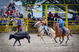 Vaqueros compiten en el lazo doble en la final del Campeonato Nacional de Rodeo entre Villa Clara y Sancti Spiritus, durante la Feria Internacional Agroindustrial Alimentaria (FIAGROP) de Rancho Boyeros el martes 18 de marzo de 2014 en La Habana, Cuba. FOTO de Calixto N. Llanes/Juventud Rebelde (CUBA)